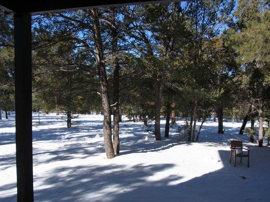 Maswik Lodge: マスウィック ロッジ 部屋からの眺め(外は雪です)