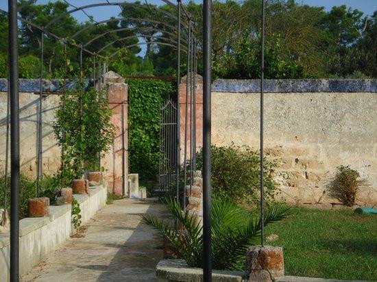 B&B Villa Maggiulli Alfieri - Dimora Storica: Ingresso aranceto
