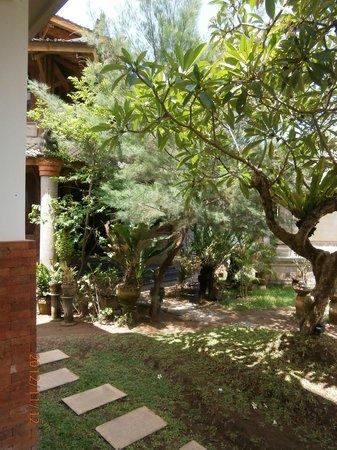 Billy Pendawa Homestay: Autre vue du jardin