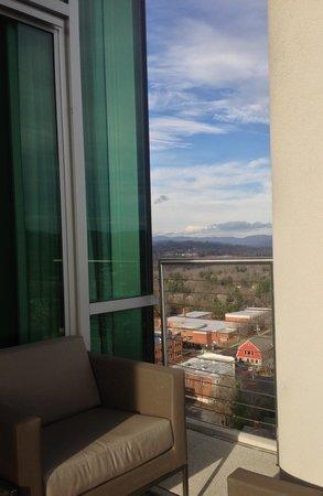 阿什維爾市中心靛藍酒店照片