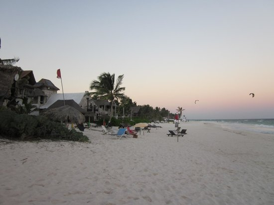 My Tulum Cabanas : looking north at the beach entrance to my tulum. Dive Tulum, the beach front neighbor has the fl