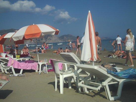 Alkyonis: beach