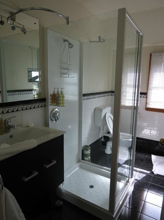 Nikau Lodge: Bathroom in the dolphin room