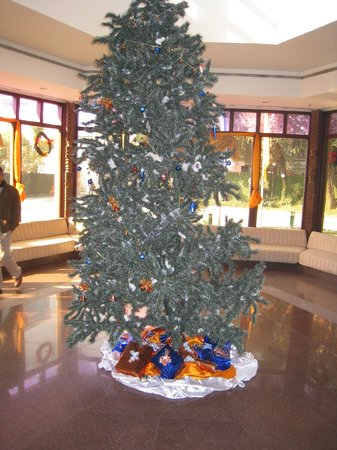 Hotel Yak & Yeti: Holiday decorations