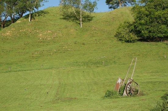 Waitomo Top 10 Holiday Park: VISTA POR DETRAS DE NUESTRA CARAVANA