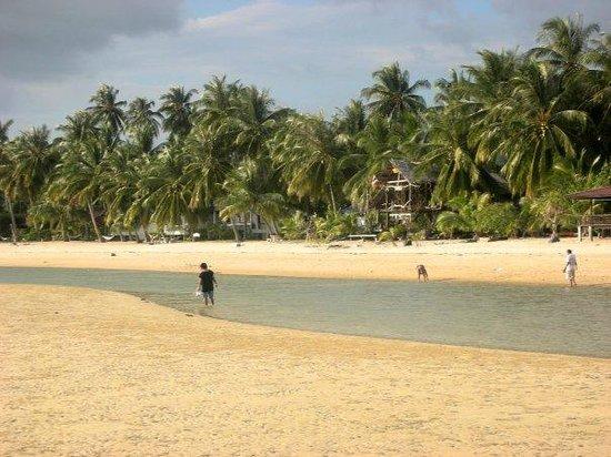 Ban Tai Beach : Bassa Marea