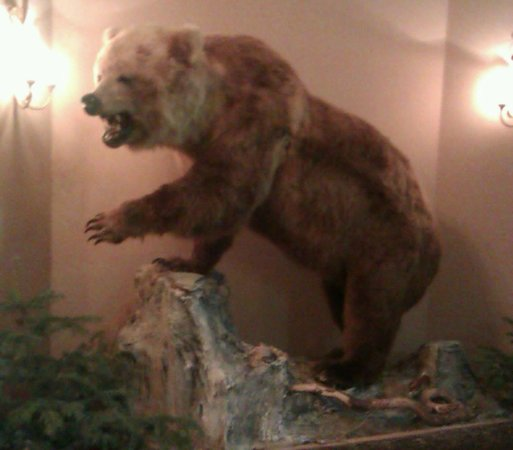 Grizzly Sport & Motorrad Resort: Grizzly awaits you in the reception, love him