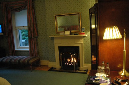 ‪‪Ardtara Country House‬: gas fire‬