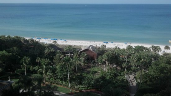 The Ritz-Carlton, Naples: View from balcony
