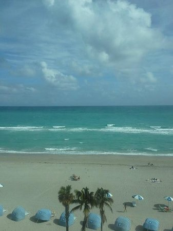 Hollywood Beach Marriott: View from Hotel