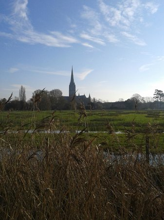 Salisbury Cathedral and Magna Carta: Salisbury Cathedral across the meadows