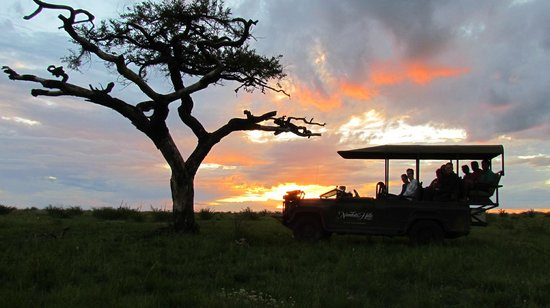 Nambiti Hills Private Game Lodge: Amazing African Sky 2012