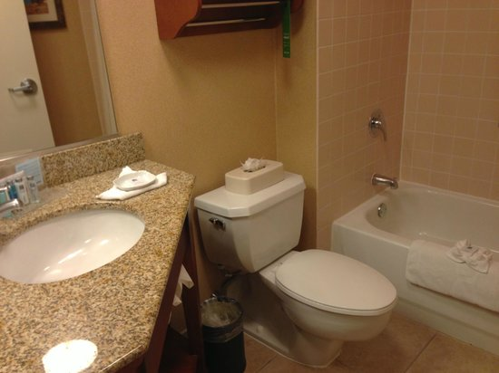 Hampton Inn University Midtown Albuquerque : my clean bathroom