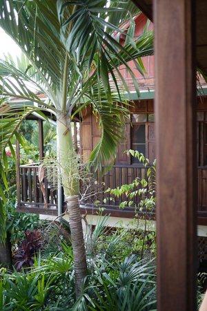 Golden Teak Home: Blick vom Balkon