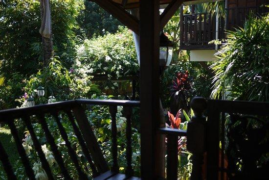 Golden Teak Home: Blick in den wundervollen Garten