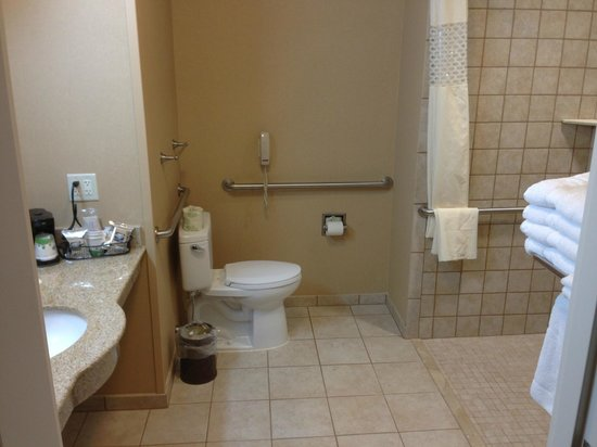 Hampton Inn Kingston: Bathroom