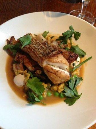 Smolt: market fish