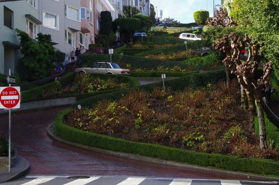 The Real S.F. Tour: Lombard street