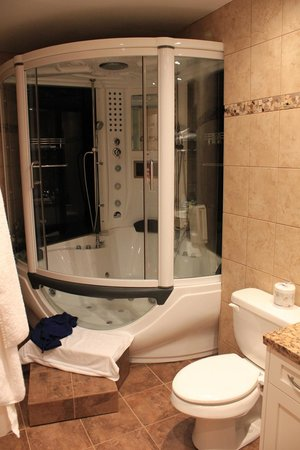 Sunshine Coast Resort Hotel & Marina: The Time Machine bathtub/steam sauna/shower combo