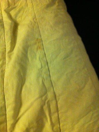 Gaido's Seaside Inn:                                     Stains on the bedspread