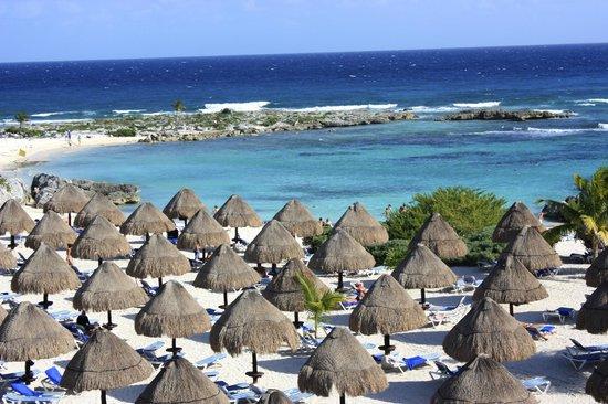 Grand Sirenis Riviera Maya Resort & Spa: récif et plage