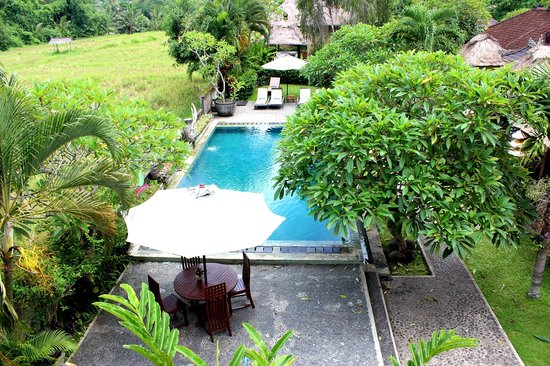 Mandala Desa: The swimming pool