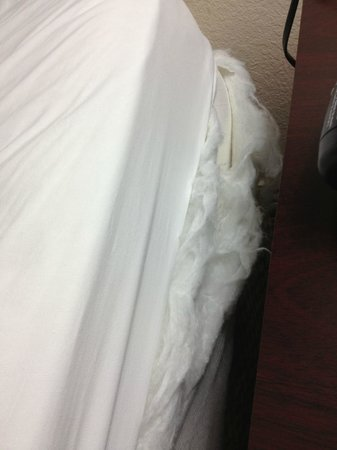 Best Western Plus Kalamazoo Suites:                   Blown Out mattress