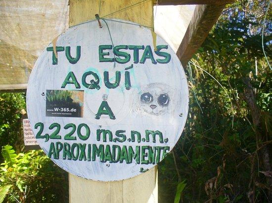 El Explorador Gardens: la parte mas alta del eco-jardin