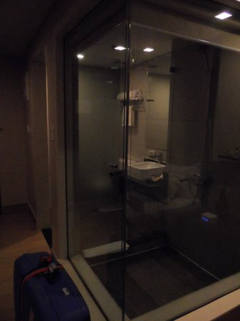 Goldberry Suites & Hotel: Bathroom completely in glass