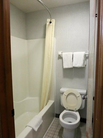 Econo Lodge North: Bathroom
