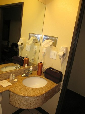 Microtel Inn & Suites by Wyndham Huntsville: Bathroom Shot 2