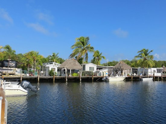 Key Largo Kampground and Marina: Marina