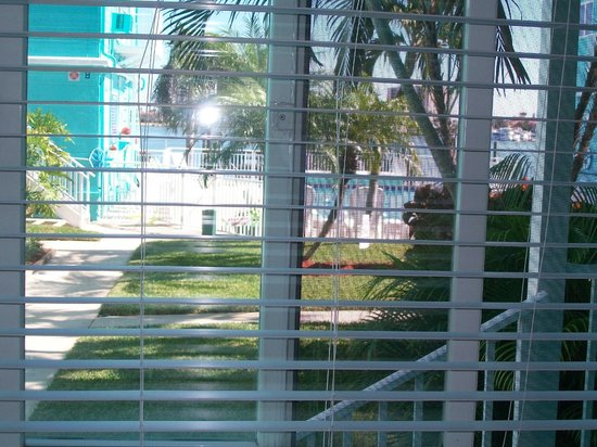 Coral Resort Condominiums: Front window view