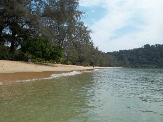 Lazy Beach: Beach
