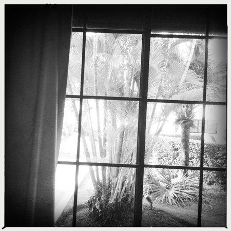 BlueBay Villas Doradas Adults Only: Window