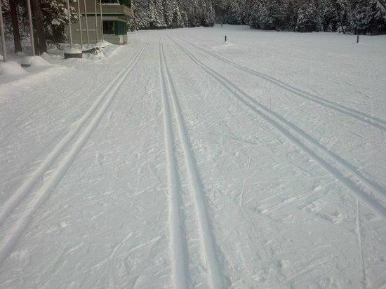 Mount Van Hoevenberg : Cross-Country Skiing
