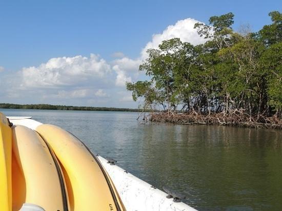 Marco Island Boat Tours: Cruising along