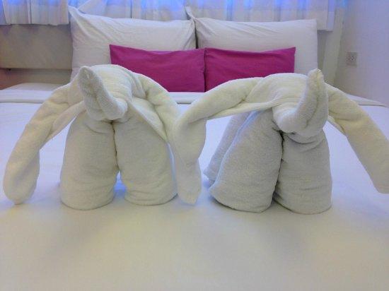 Budacco: Bed