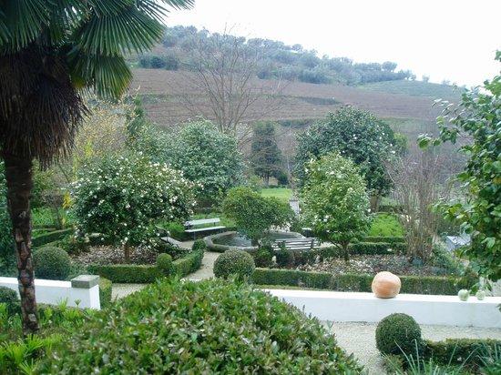 Casa da Azenha : View of the vineyards