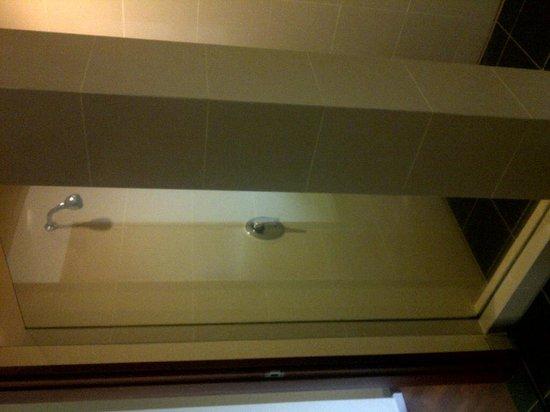 Alila Jakarta: shower