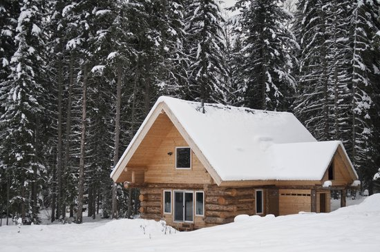 Beaverfoot Lodge: Dream Cabin