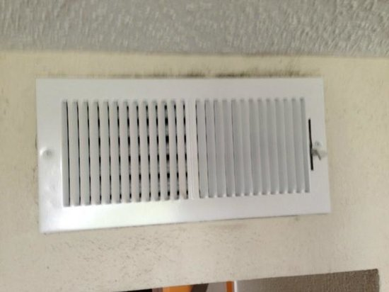 Sheraton Suites Cypress Creek Ft. Lauderdale: Mold around a/c vent