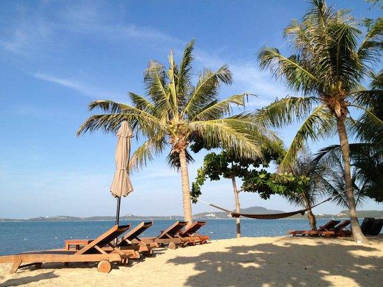 ดับเบิ้ลยู รีทรีท เกาะสมุย:                   W's private beach
