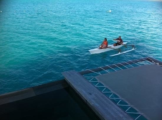 Four Seasons Resort Bora Bora: personnel exceptionnel .... meme contre le courant !