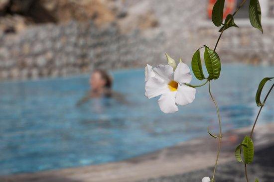 Hotel La Floridiana: nuoto