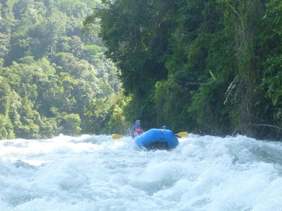Continente Ivantours: Jungle down to the water