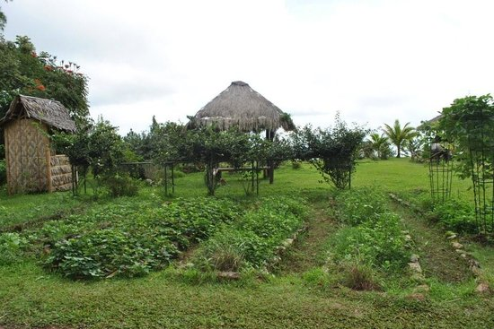 Eden Nature Park: Organic farm