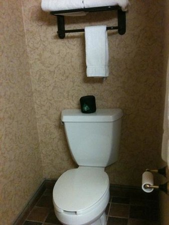 Chateau on the Lake Resort & Spa: toilet just like any other toilet; serves the same purpose