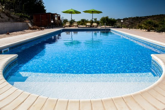 large swimming pool 10mx5m picture of the roost