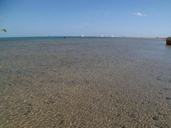 Moon Resort Marsa Alam: spiaggia